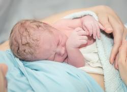 e94865aa6 La cabeza del recién nacido  características y cuidados
